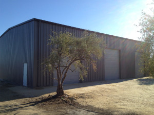 Leal-Hollister-Completed-Building